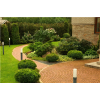 Уход за садом,  газоном,  декоративными прудами