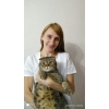 Ветеринарные услуги на дому в Москве